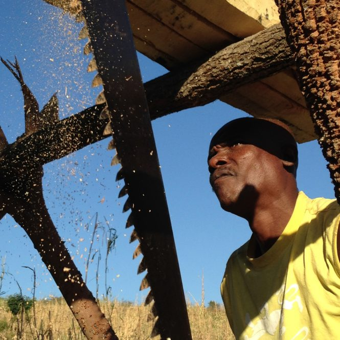 Using a two-man saw Haitian farmers cut wood to repair a home along the border with the Dominican Republic.