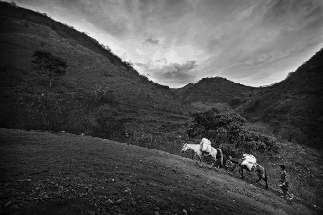 Guatemala Malnutrition - Long Walk